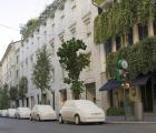 """Проект """"L'Arbre de L'Espoir"""": дизайн, забота об окружающей среде и единство"""